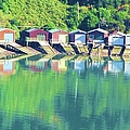 Boat House Reflections by Michele Penner