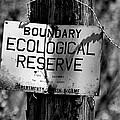 Boundary by Bob Wall