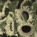 Bouquet by Diane Dugas