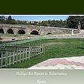 Bridge En Route To Salamanca by John Shiron