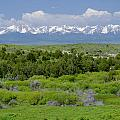 Bridger Mountain View by Roderick Bley