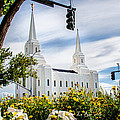 Brigham City Temple Street Lights by La Rae  Roberts