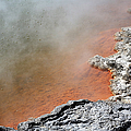 Bubbles Rising In Champagne Pool Hot by Richard Roscoe