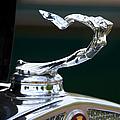 Cadillac Hood Ornament by Chris Dutton