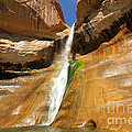 Calf Creek Falls by Adam Jewell