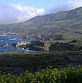 California Coast by Cyndi Combs
