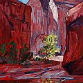 Canyon Light by Erin Hanson