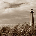 Cape May Lighthouse by Skip Willits