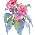 Carmel Begonias by Pat Yager
