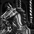 Carousel Horses Mono by Steve Purnell