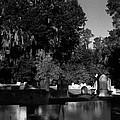 Cemetery Natchez Mississippi by Doug Duffey