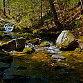 Childs Brook 3 by George Ramos