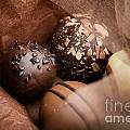 Chocolate by Kati Finell
