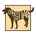 Chocolate Lab by Geoff Strehlow