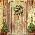Christmas Wreath by Tom Gowanlock