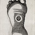 Christ's Stigmata, 17th Century by Middle Temple Library
