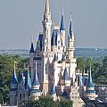 Cinderella's Castle by Carol  Bradley