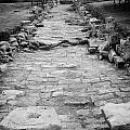Colonnaded Street In The Ancient Site Of Salamis Famagusta Turkish Republic Of Northern Cyprus Trnc by Joe Fox