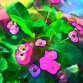 Color 115 by Pamela Cooper