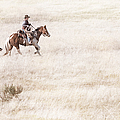 Cowboy And Dog by Cindy Singleton