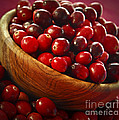 Cranberries In A Bowl by Elena Elisseeva