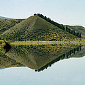 Cromwell Dam Reflections by Carole-Anne Fooks