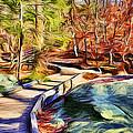 Cunningham Falls Walkway by Stephen Younts