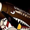 Curtiss P-40n Warhawk by David Patterson