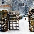 Decorative Iron Gate In Winter by Jill Battaglia