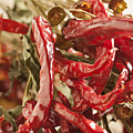 Dried Chili Peppers by Brian Yarvin