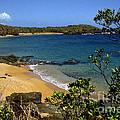 El Convento Beach by Thomas R Fletcher