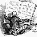 Election Cartoon, 1876 by Granger