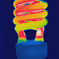 Energy Efficient Fluorescent Light by Ted Kinsman