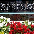 Espresso by Cynthia Amaral
