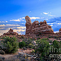 Eye View Of Arches by Robert Bales