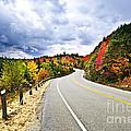Fall Highway by Elena Elisseeva