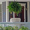 Fern On Front Porch by Jack Schultz
