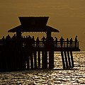 Fishing At Naples Pier by Ed Gleichman
