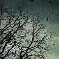 Flock Of Birds Flying Over Bare Wintery Trees by Sandra Cunningham