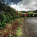 Flores Island - Azores by Edgar Laureano
