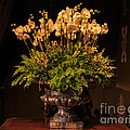 Flower Arrangement Chateau Chenonceau by Louise Heusinkveld