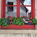 Flower Pots ...... 13 by Allen Beatty