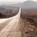Foggy Road In Dobrogea by Gabriela Insuratelu