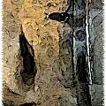 Fossilties by Brenda Leedy