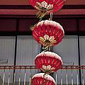 Four Lanterns by Kelley King