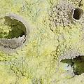 Fumarole Deposits In The Dallol by Richard Roscoe