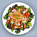 Garden Salad by Elena Elisseeva