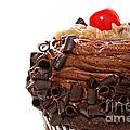 German Chocolate Cupcake 2 by Andee Design