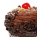 German Chocolate Cupcake 3 by Andee Design