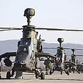 German Tiger Eurocopters At Fritzlar by Timm Ziegenthaler